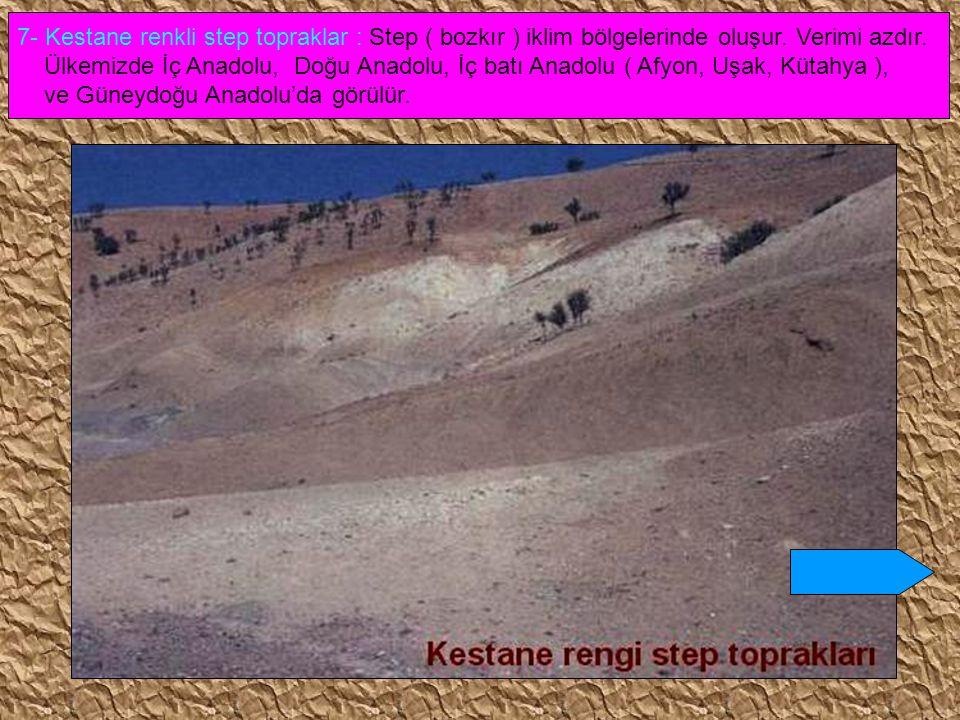 7- Kestane renkli step topraklar : Step ( bozkır ) iklim bölgelerinde oluşur. Verimi azdır.