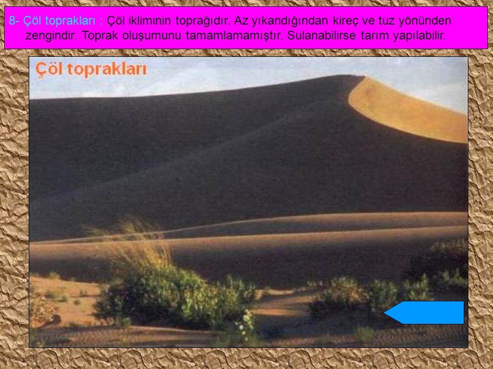 8- Çöl toprakları : Çöl ikliminin toprağıdır