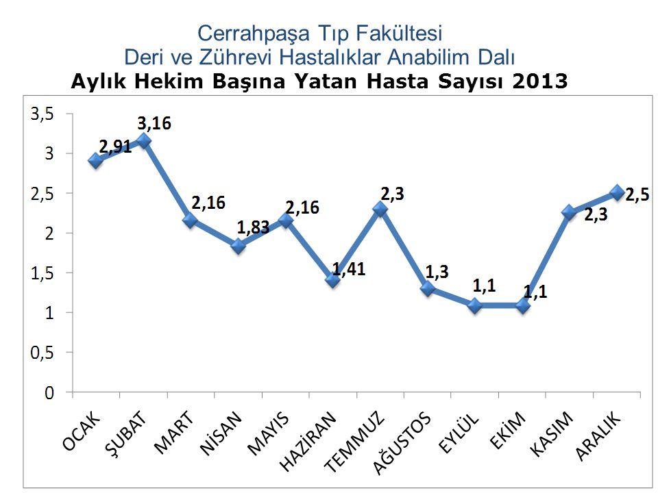 Aylık Hekim Başına Yatan Hasta Sayısı 2013