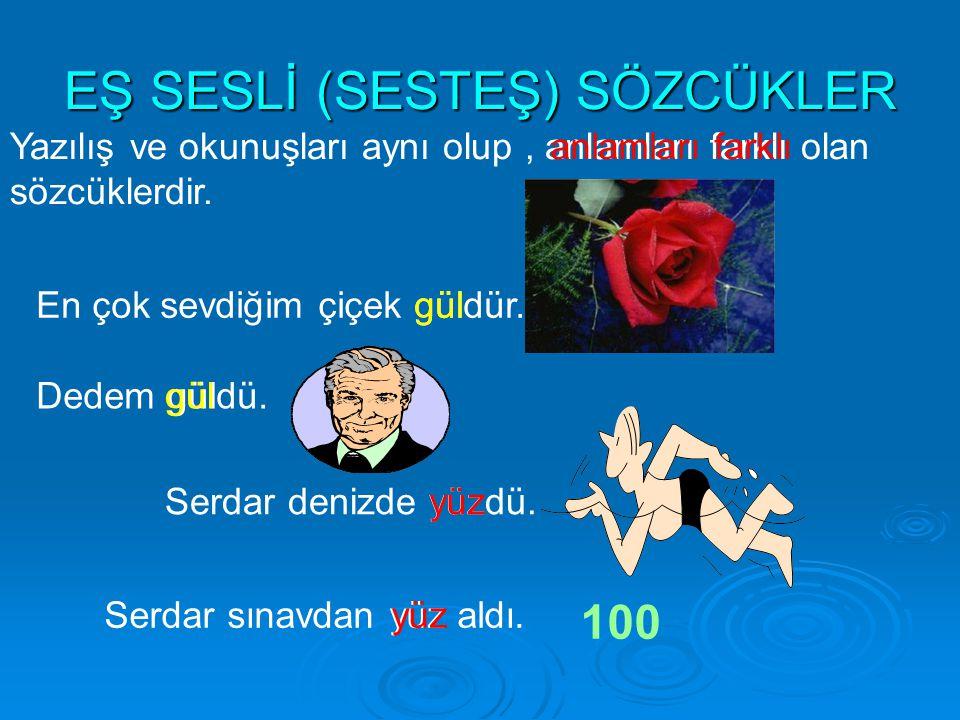 EŞ SESLİ (SESTEŞ) SÖZCÜKLER