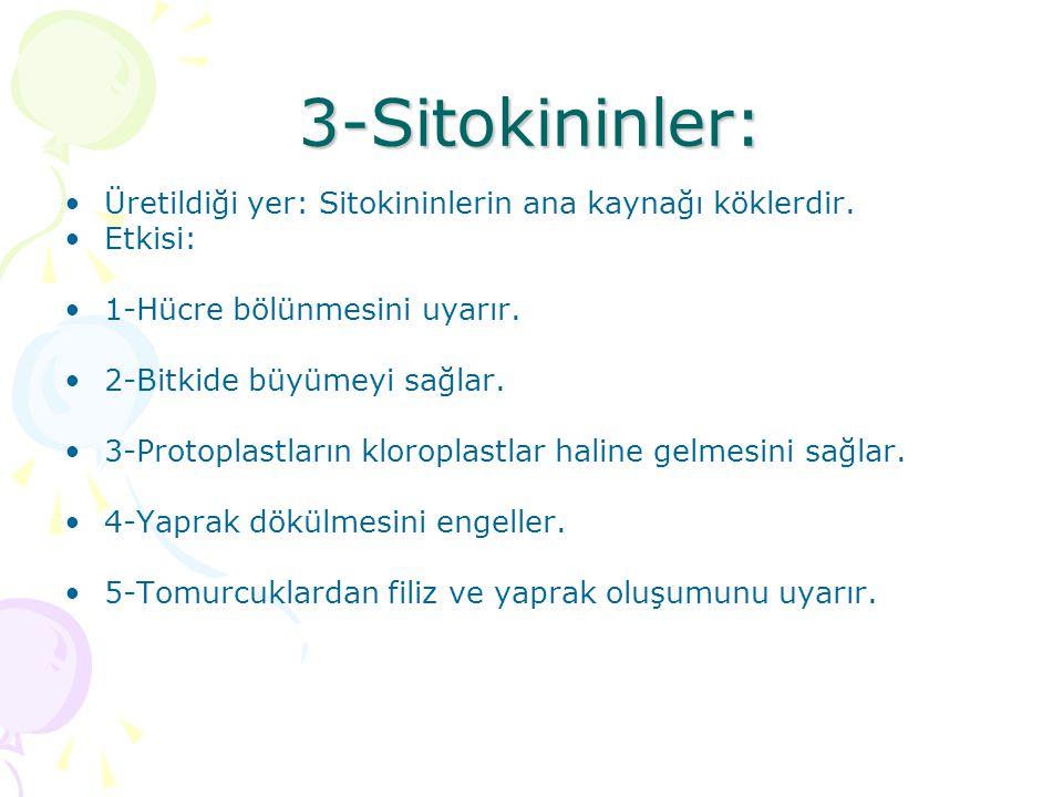 3-Sitokininler: Üretildiği yer: Sitokininlerin ana kaynağı köklerdir.