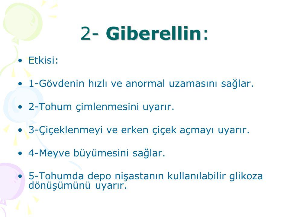 2- Giberellin: Etkisi: 1-Gövdenin hızlı ve anormal uzamasını sağlar.