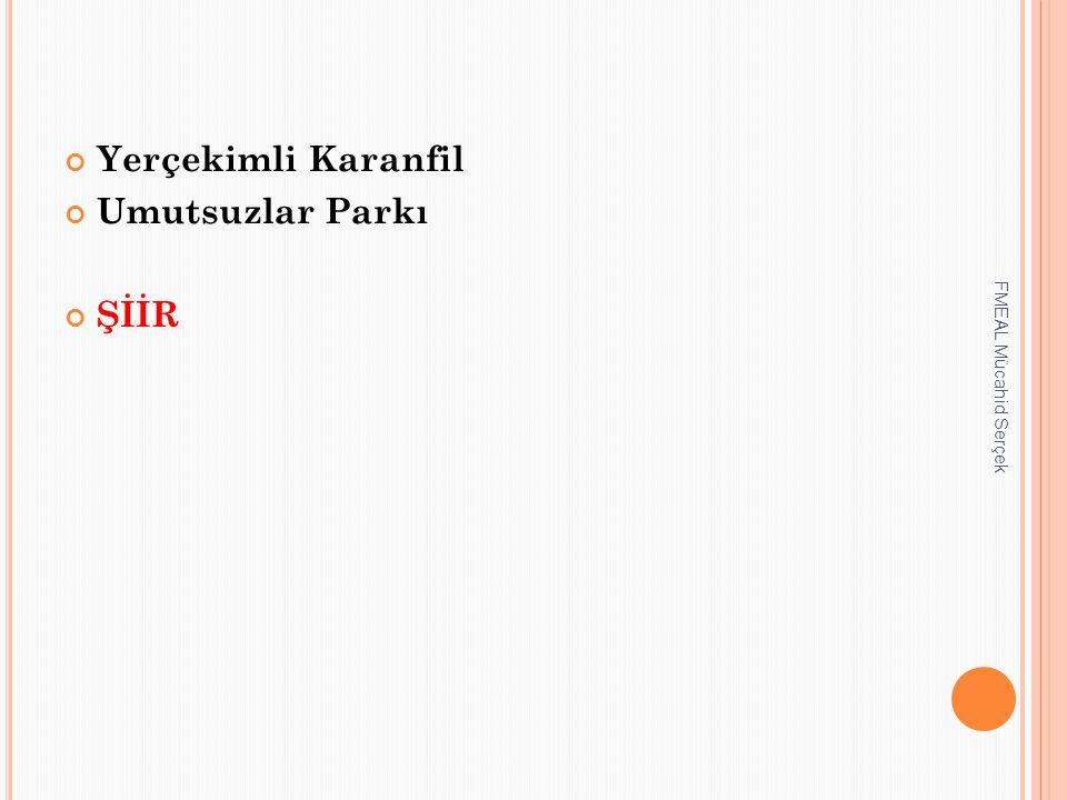 Yerçekimli Karanfil Umutsuzlar Parkı ŞİİR FMEAL Mücahid Serçek