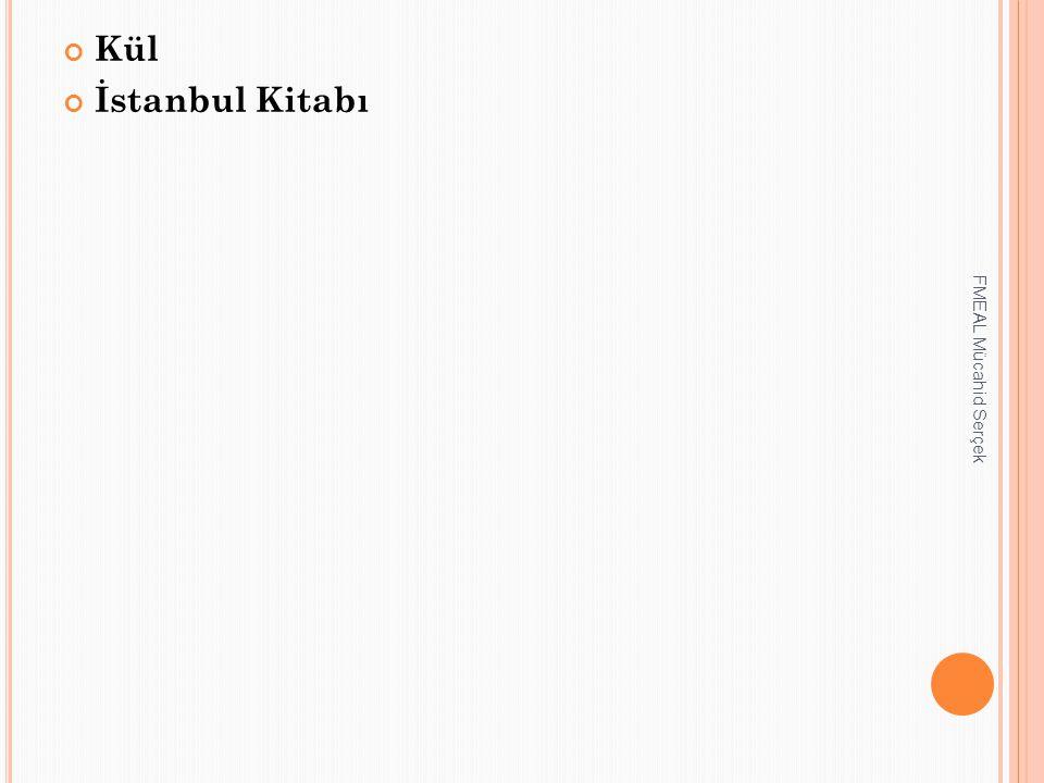 Kül İstanbul Kitabı FMEAL Mücahid Serçek