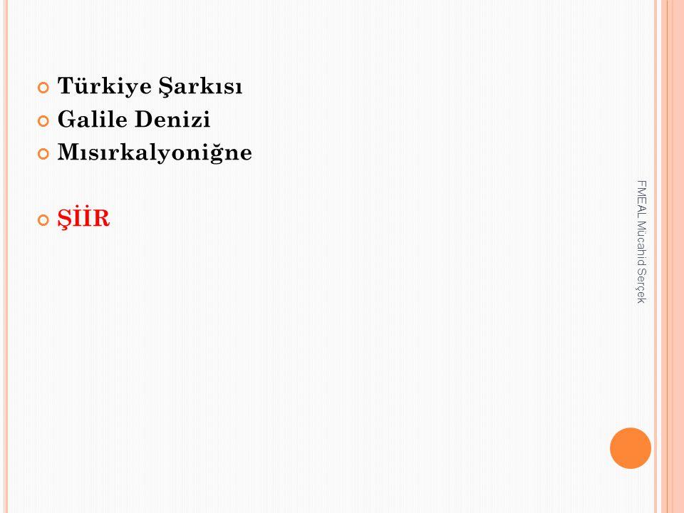 Türkiye Şarkısı Galile Denizi Mısırkalyoniğne ŞİİR