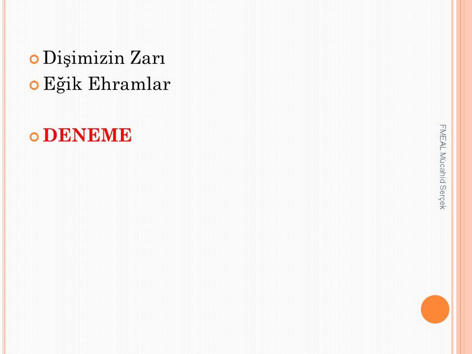Dişimizin Zarı Eğik Ehramlar DENEME FMEAL Mücahid Serçek
