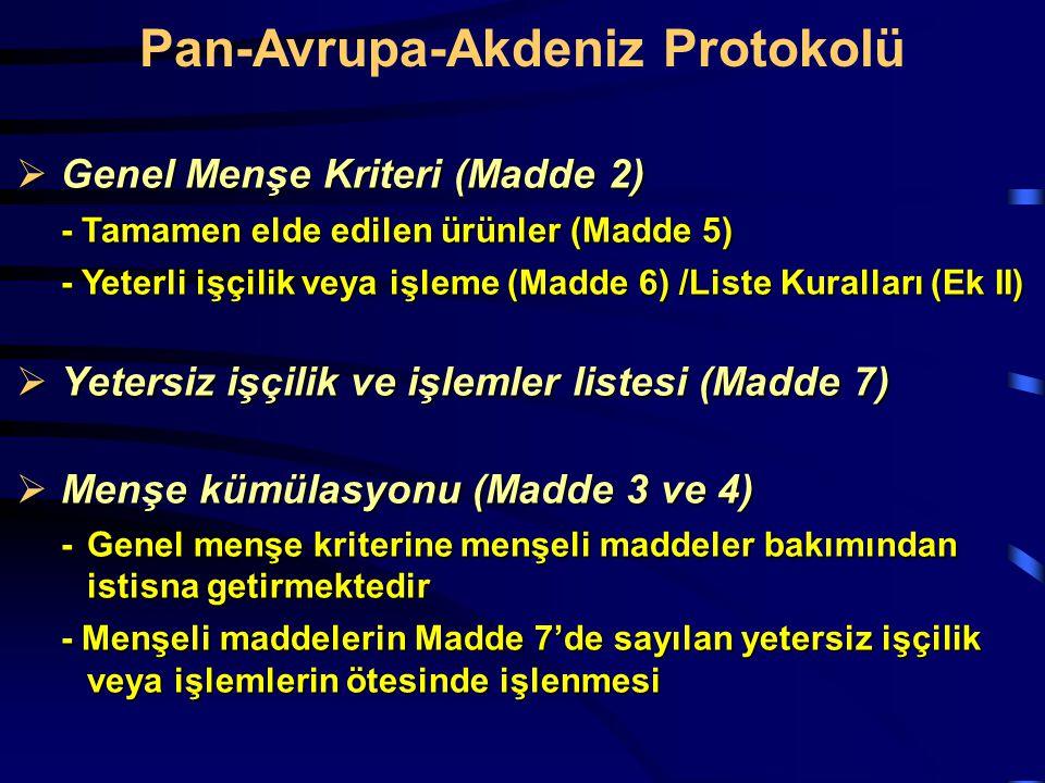 Pan-Avrupa-Akdeniz Protokolü