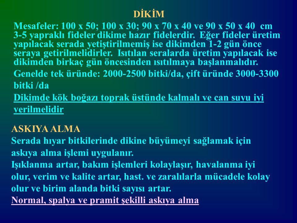 DİKİM Mesafeler: 100 x 50; 100 x 30; 90 x 70 x 40 ve 90 x 50 x 40 cm.