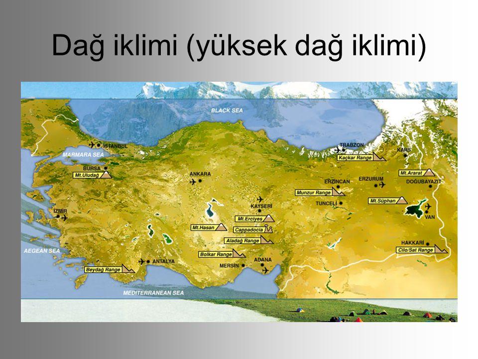 Dağ iklimi (yüksek dağ iklimi)
