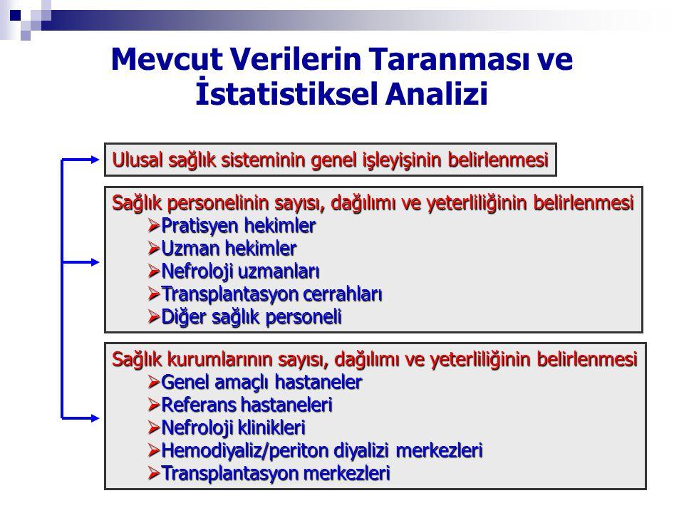 Mevcut Verilerin Taranması ve İstatistiksel Analizi