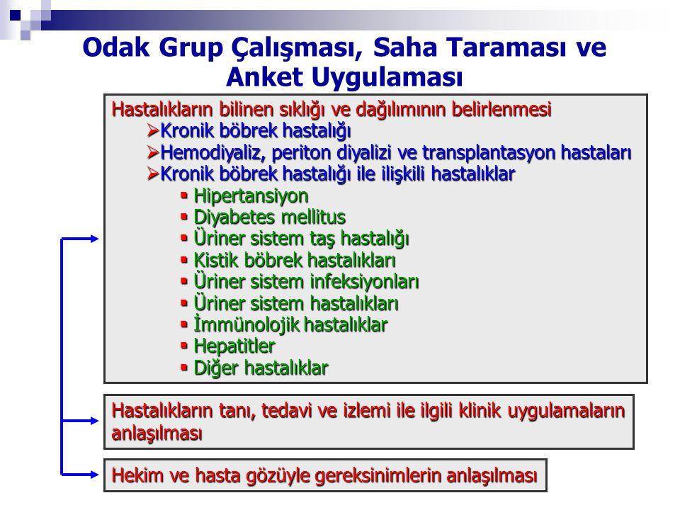 Odak Grup Çalışması, Saha Taraması ve Anket Uygulaması