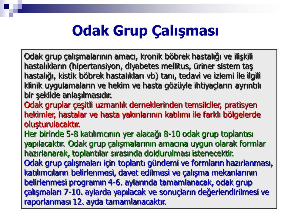 Odak Grup Çalışması Odak grup çalışmalarının amacı, kronik böbrek hastalığı ve ilişkili.