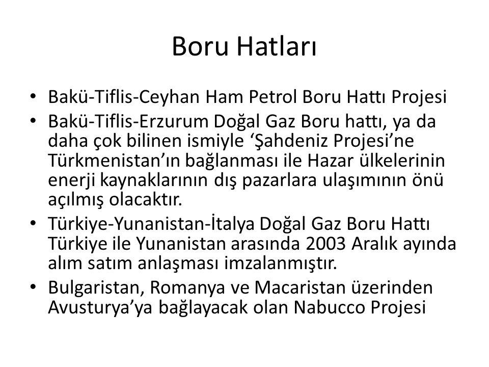 Boru Hatları Bakü-Tiflis-Ceyhan Ham Petrol Boru Hattı Projesi