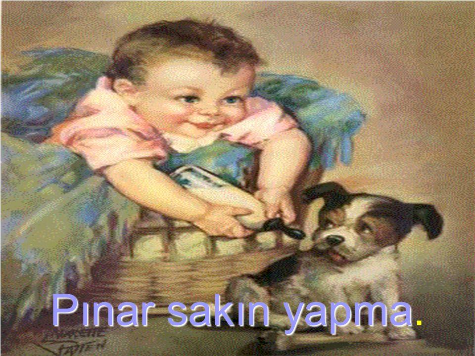 Pınar sakın yapma.