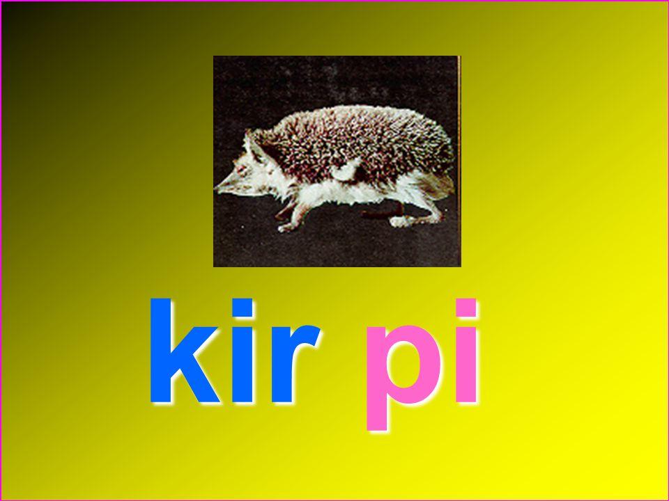 kir pi