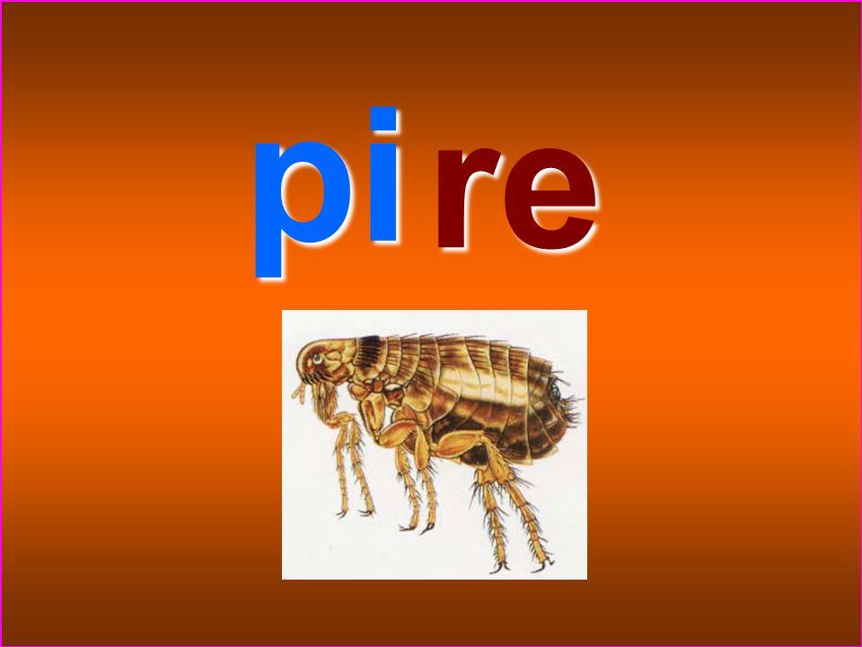 pi re