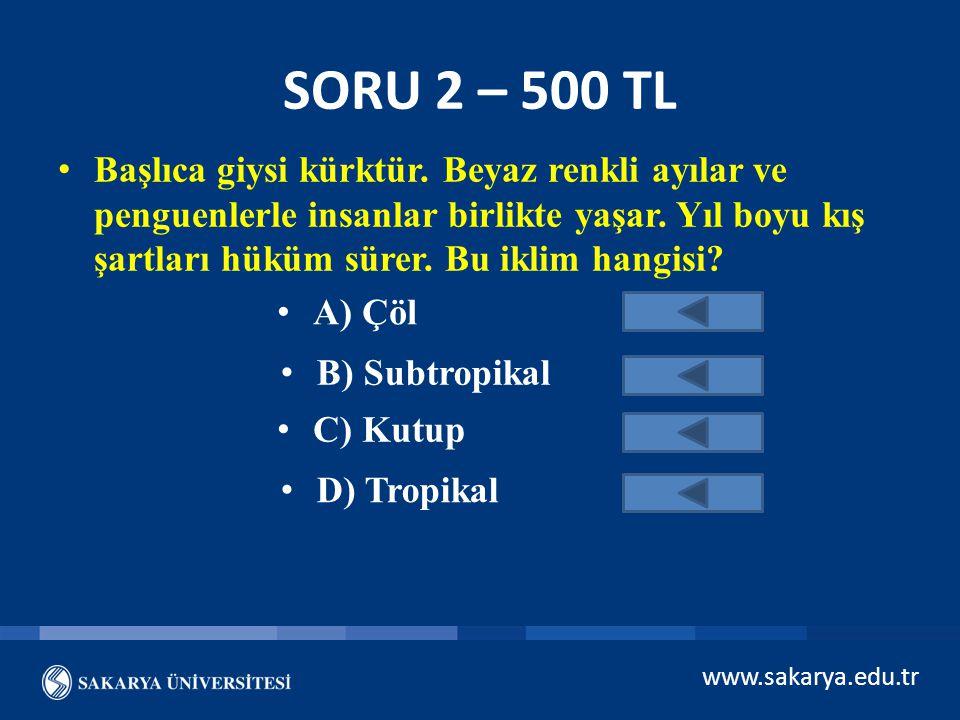 SORU 2 – 500 TL
