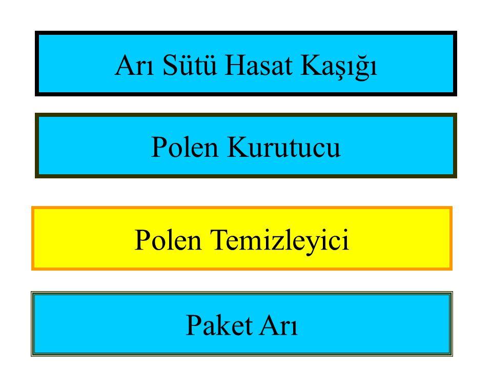 Arı Sütü Hasat Kaşığı Polen Kurutucu Polen Temizleyici Paket Arı
