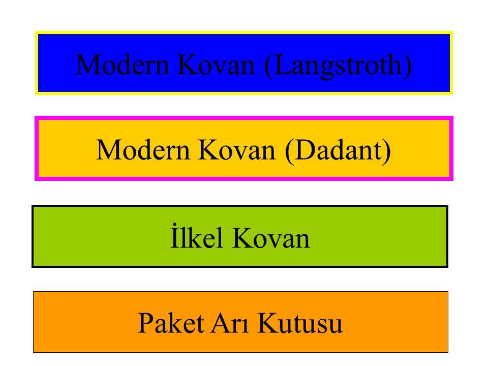 Modern Kovan (Langstroth)