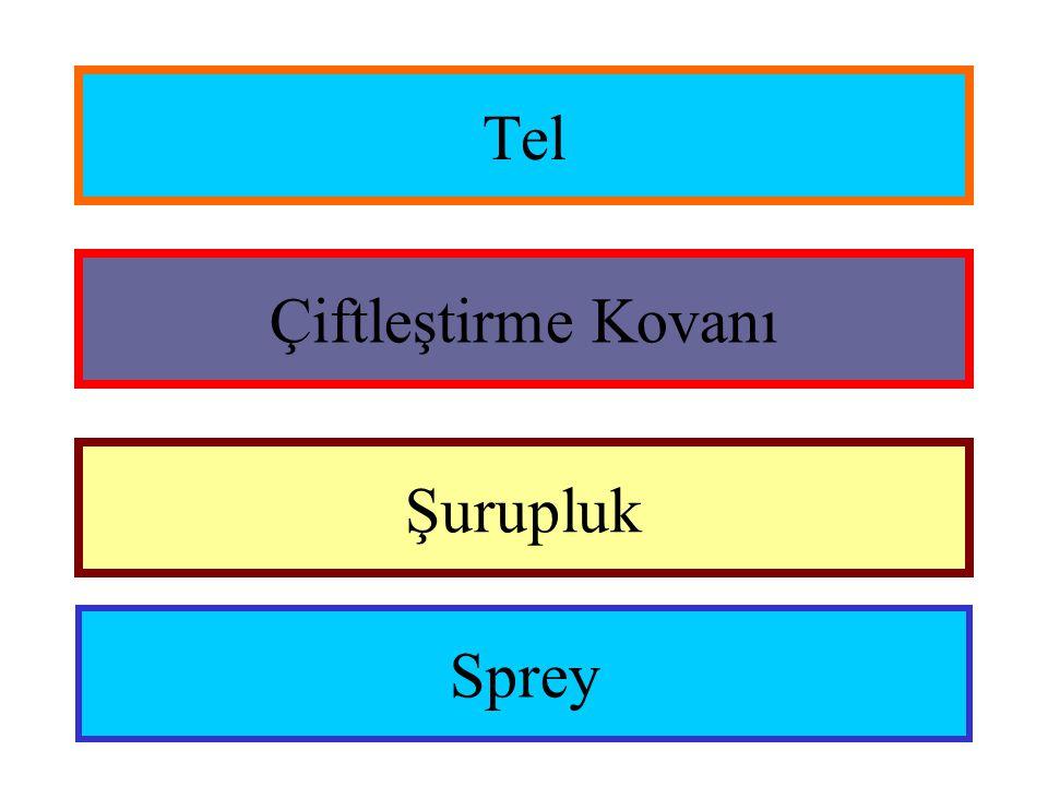 Tel Çiftleştirme Kovanı Şurupluk Sprey