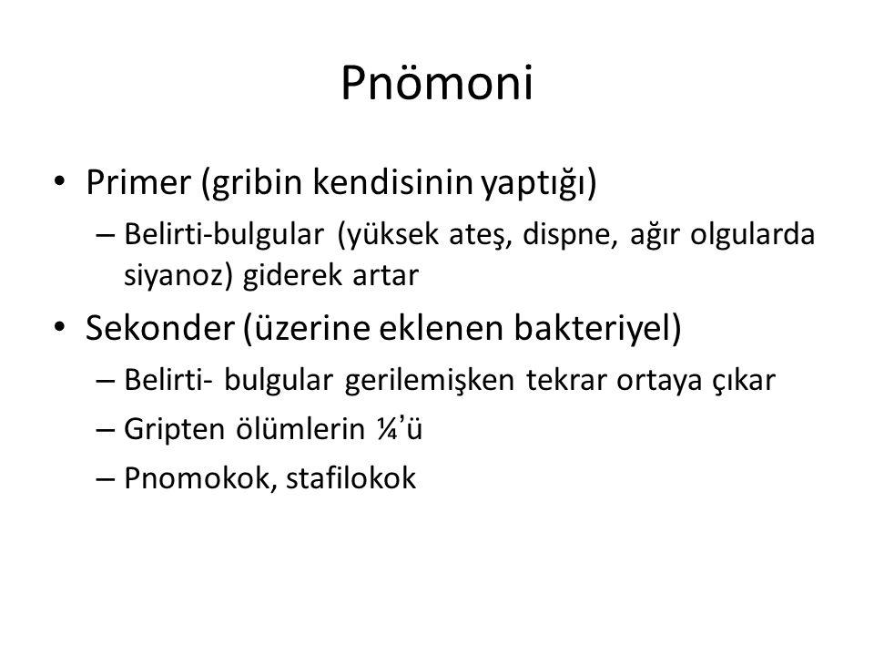 Pnömoni Primer (gribin kendisinin yaptığı)