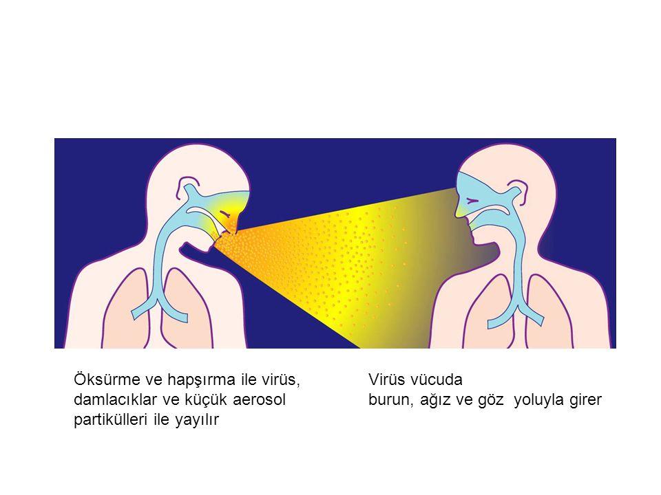İnfluenza Çok Bulaşıcıdır