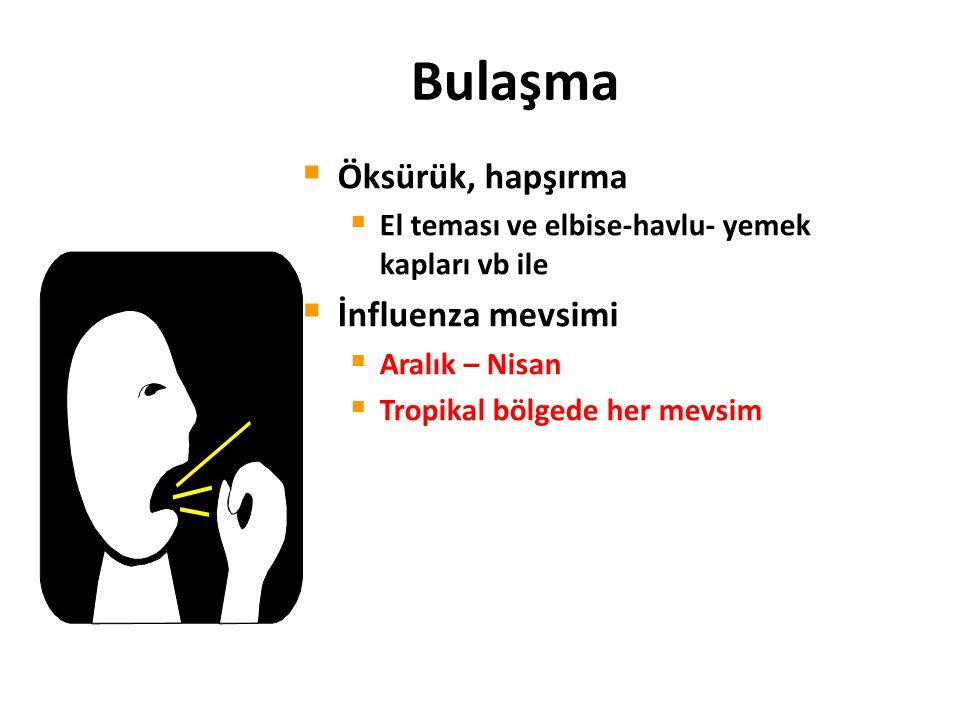 Bulaşma Öksürük, hapşırma İnfluenza mevsimi