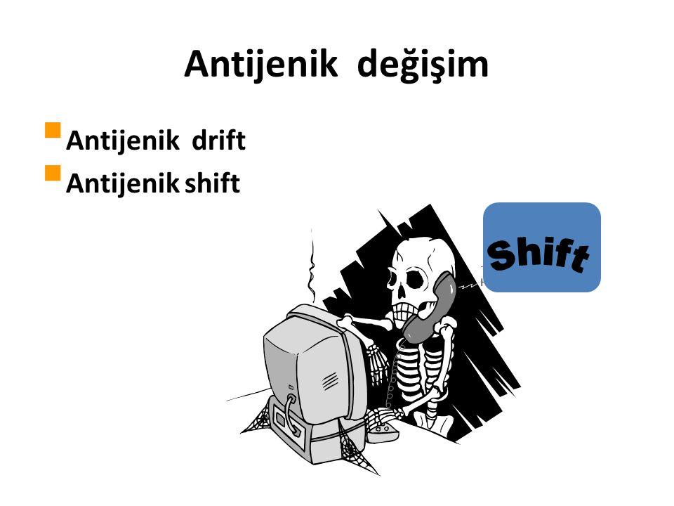 Antijenik değişim Antijenik drift Antijenik shift Shift