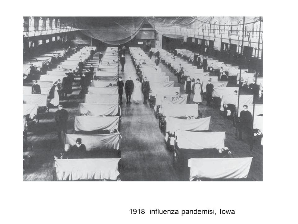 1918 influenza pandemisi, Iowa