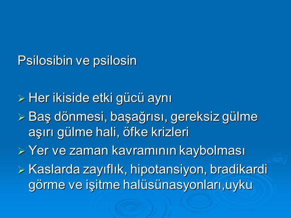 Psilosibin ve psilosin
