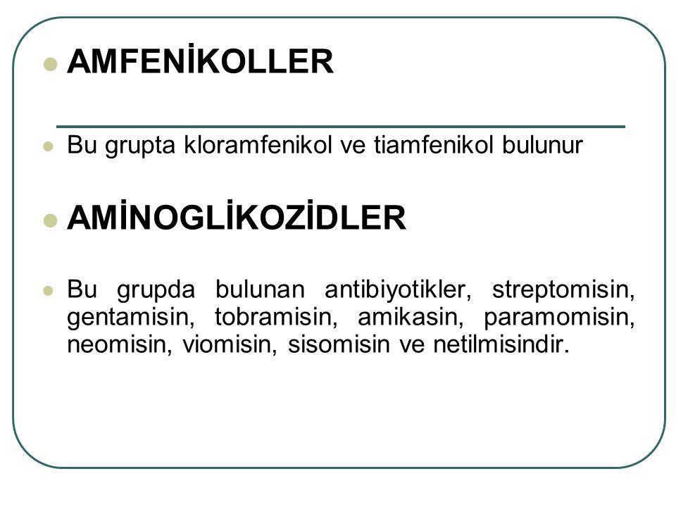 AMFENİKOLLER AMİNOGLİKOZİDLER