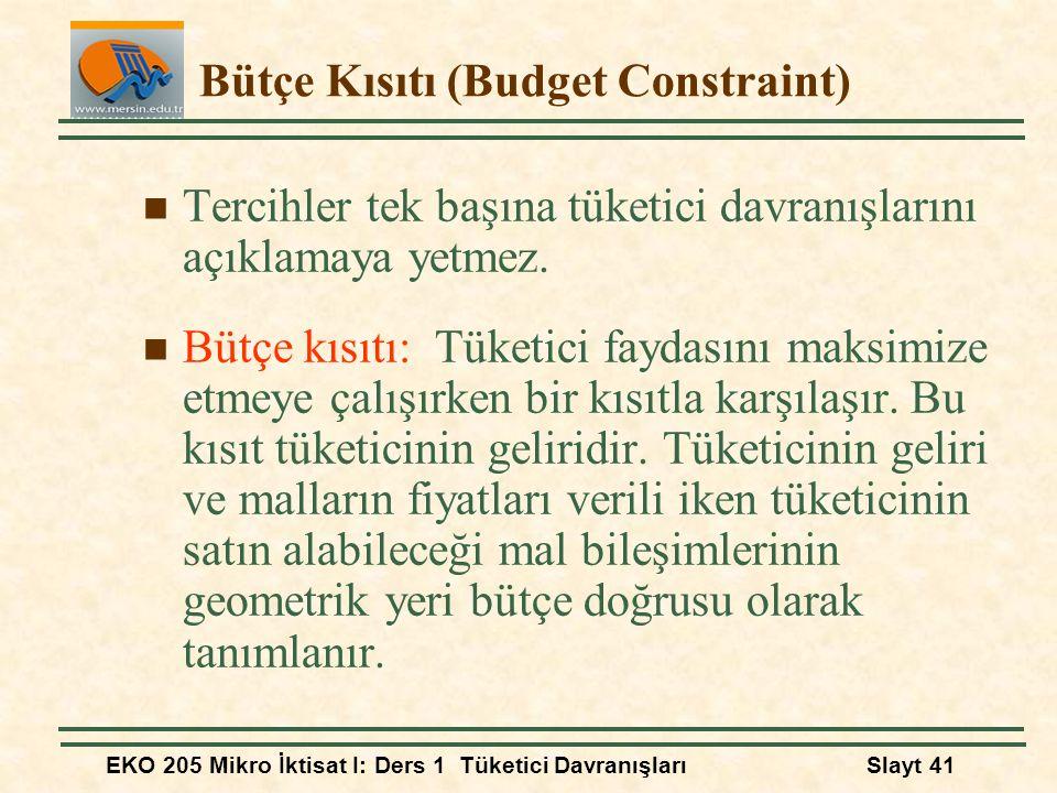 Bütçe Kısıtı (Budget Constraint)