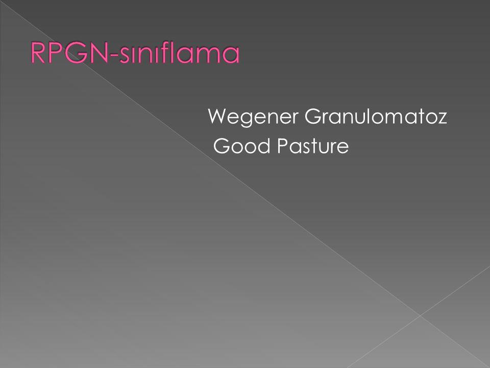 RPGN-sınıflama Wegener Granulomatoz Good Pasture