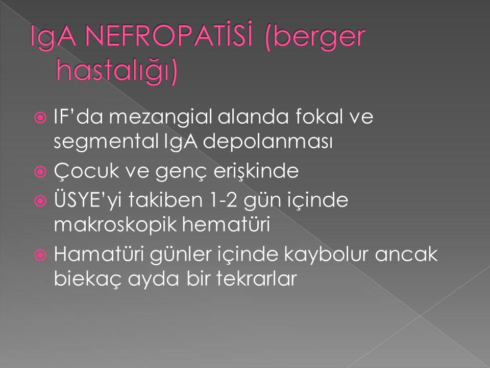 IgA NEFROPATİSİ (berger hastalığı)