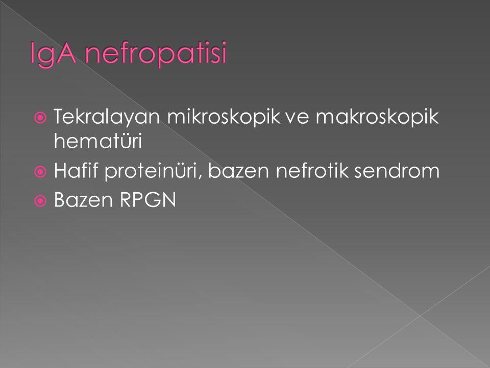 IgA nefropatisi Tekralayan mikroskopik ve makroskopik hematüri