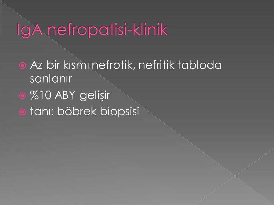 IgA nefropatisi-klinik