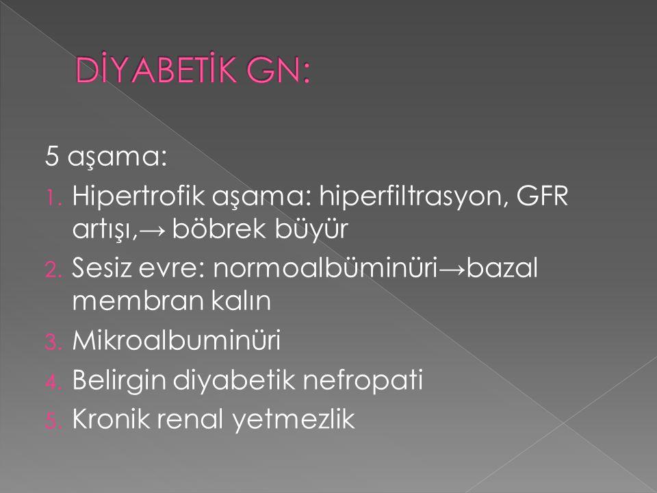 DİYABETİK GN: 5 aşama: Hipertrofik aşama: hiperfiltrasyon, GFR artışı,→ böbrek büyür. Sesiz evre: normoalbüminüri→bazal membran kalın.