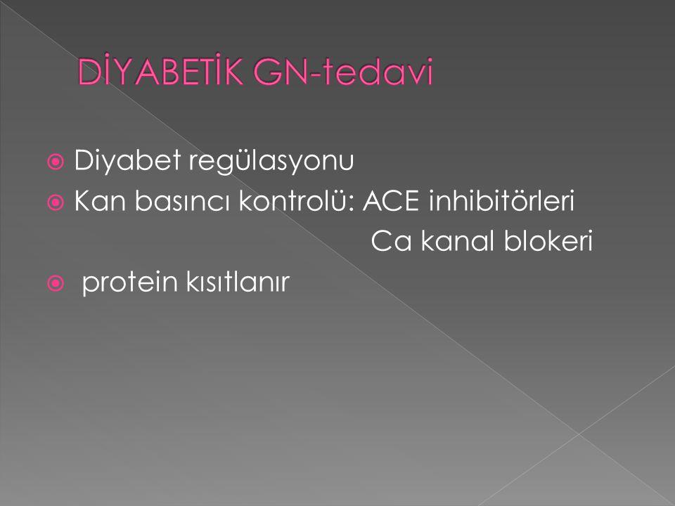 DİYABETİK GN-tedavi Diyabet regülasyonu