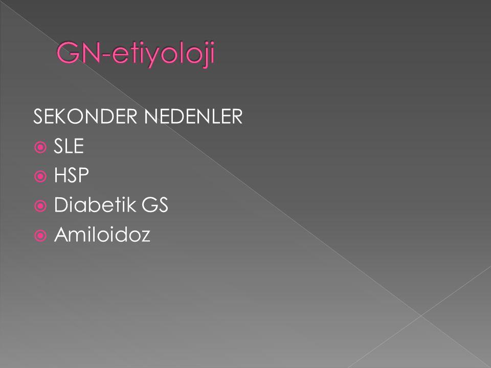 GN-etiyoloji SEKONDER NEDENLER SLE HSP Diabetik GS Amiloidoz