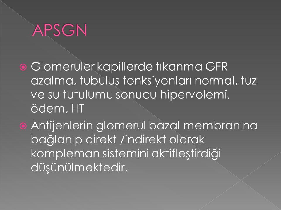 APSGN Glomeruler kapillerde tıkanma GFR azalma, tubulus fonksiyonları normal, tuz ve su tutulumu sonucu hipervolemi, ödem, HT.