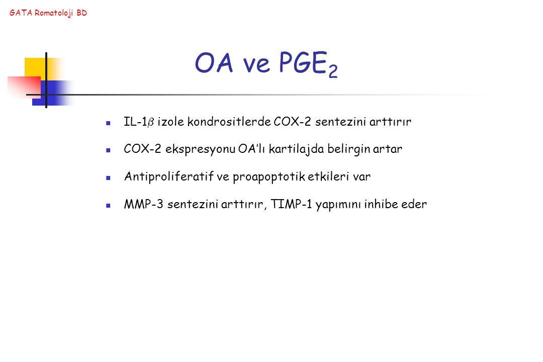 OA ve PGE2 IL-1 izole kondrositlerde COX-2 sentezini arttırır
