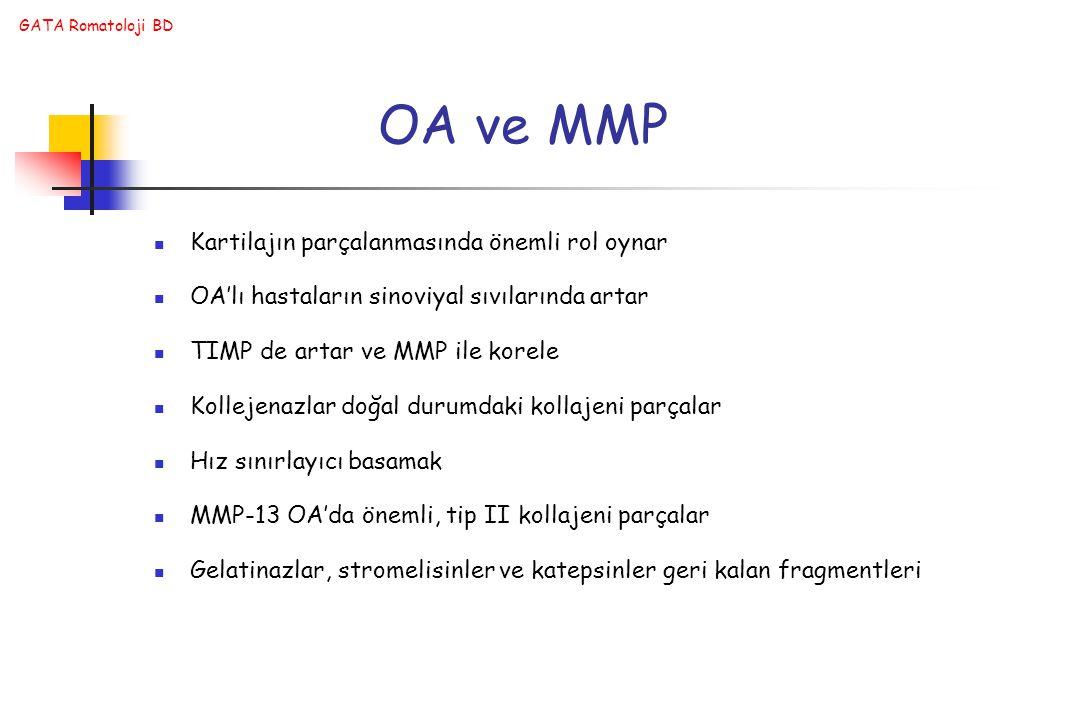 OA ve MMP Kartilajın parçalanmasında önemli rol oynar