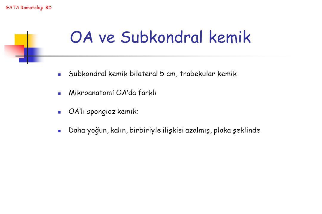 OA ve Subkondral kemik Subkondral kemik bilateral 5 cm, trabekular kemik. Mikroanatomi OA'da farklı.