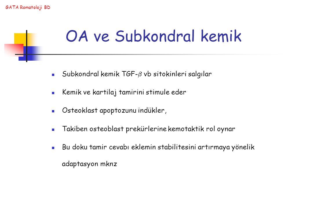 OA ve Subkondral kemik Subkondral kemik TGF- vb sitokinleri salgılar