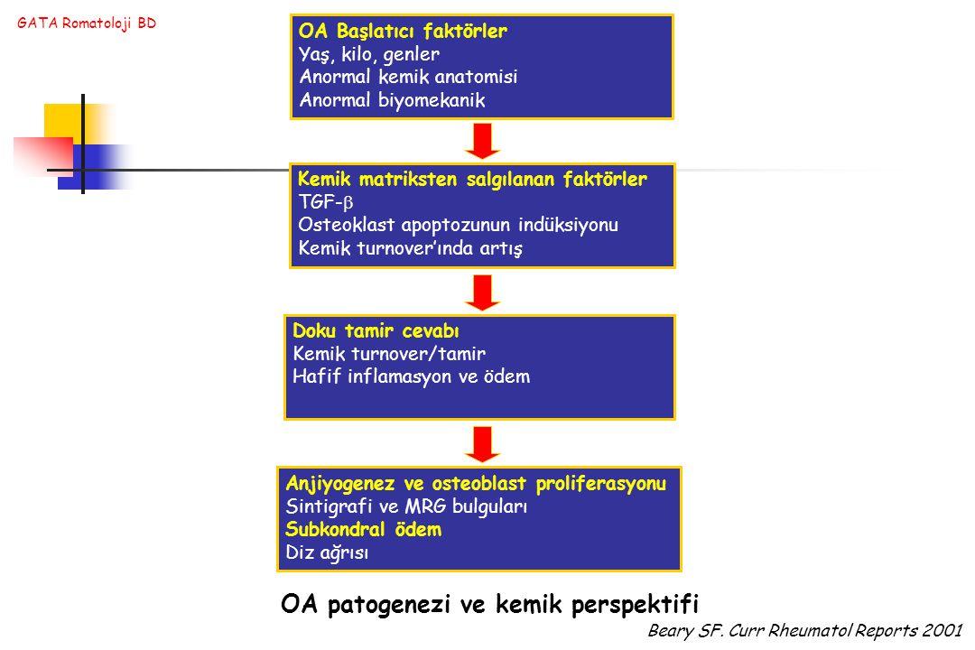 OA patogenezi ve kemik perspektifi