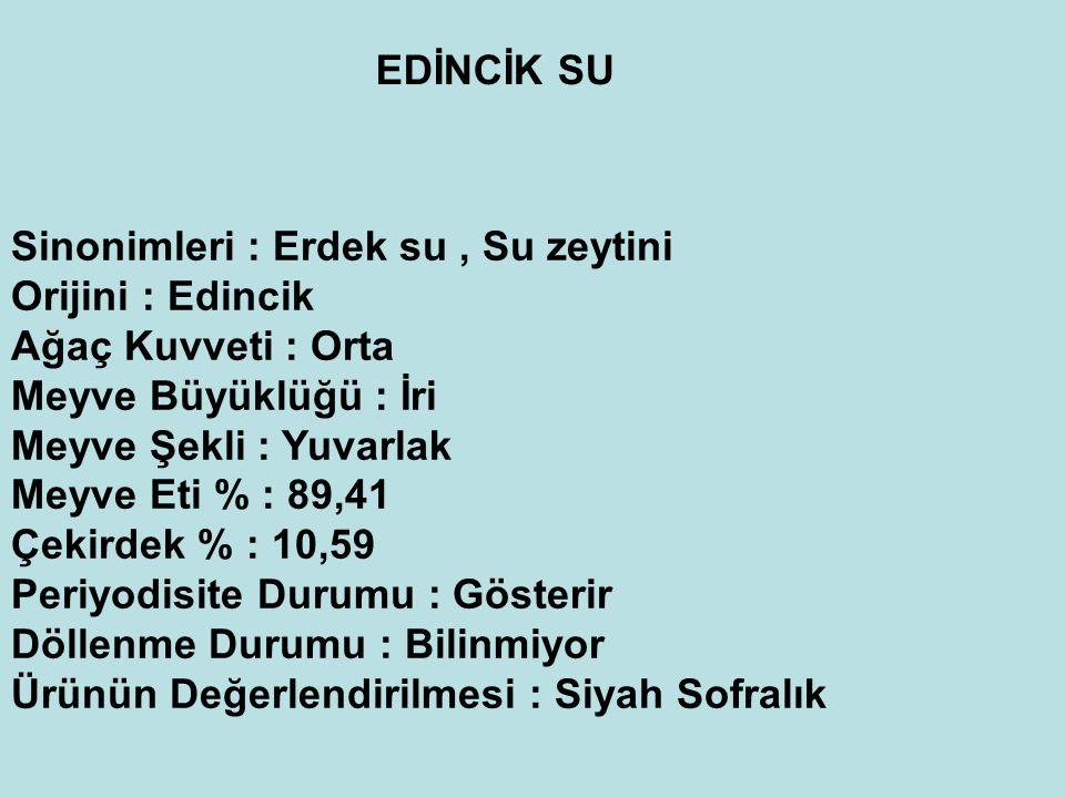 EDİNCİK SU