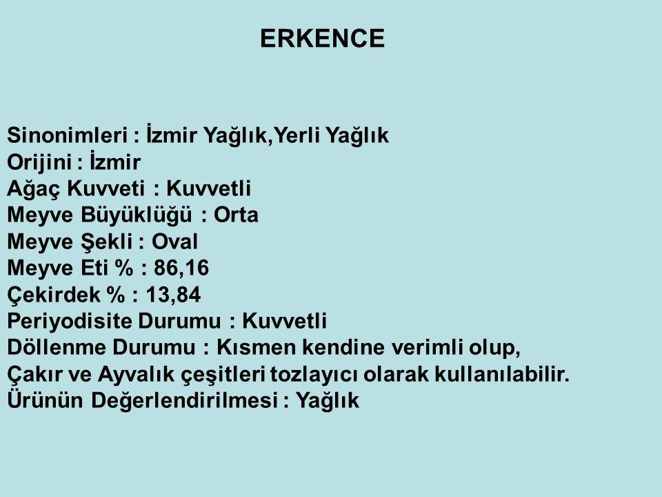 ERKENCE