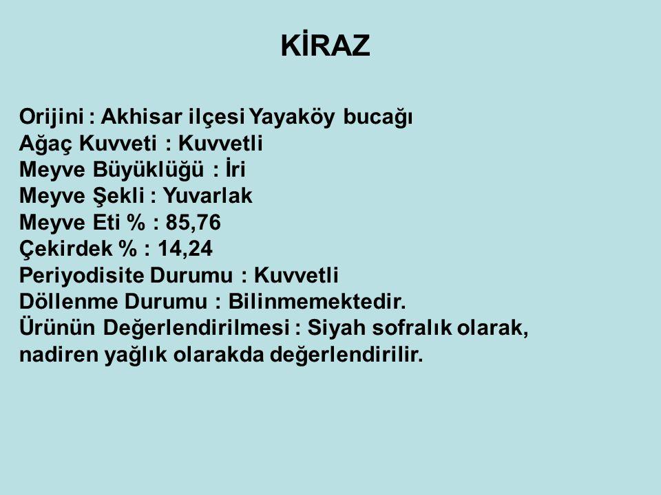 KİRAZ