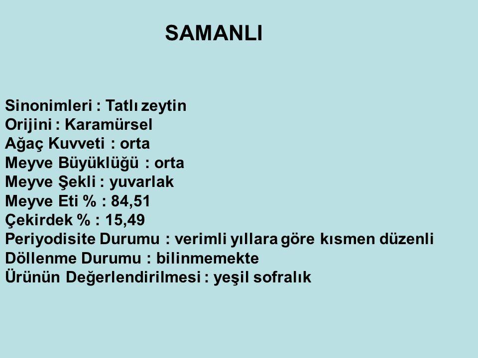 SAMANLI