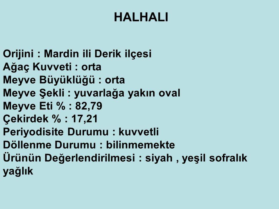 HALHALI